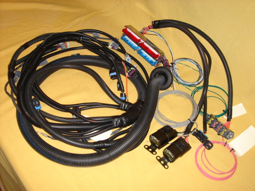 7221799 wiring harness kit gm trikes gmc wiring diagrams for diy car repairs Wiring Harness Diagram at pacquiaovsvargaslive.co